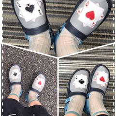 お出かけカッパ/今日の靴 今日は、カッパ寿司🍣に家族の要望で行く事…