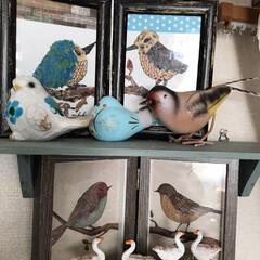 小鳥のコーナー 鳥のコーナー マスキングテープでちぎり絵…(1枚目)