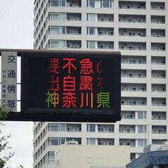商品券当たる/桜木町みなとみらい 今日はケーキ買いに桜木町駅前で車🚗降ろさ…(2枚目)