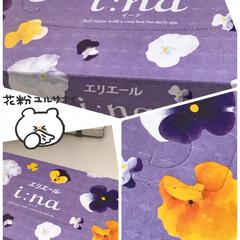 ティッシュ箱の柄/ティッシュBOX 皆さんの投稿見てお花も綺麗だなと思ってテ…(1枚目)