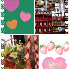 リミ友プレゼント/苺🍓部屋に仲間入り 苺🍓部屋のグッチさん家に可愛らしい野いち…