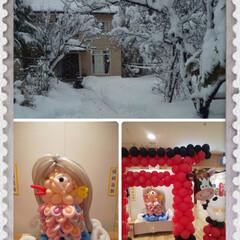 アマビエ風船/雪国 雪国の妹から雪が❄️❄️❄️凄い実家と姉…