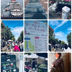 横浜散歩 今日は家族でランチして秋のローズ&ガーデ…