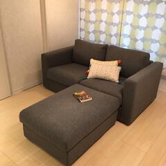 リビング収納/IKEAソファ/インテリア/場所の節約/ソファ/簡単/... わが家のぬいぐるみ収納。 特に大物。 飾…(4枚目)