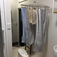 ふかふか/ビッグフェイスタオル/生活の知恵/室内干しアイデア/ヒオリエのタオル/洗濯どうしてる?/... うちの室内干し場。天井埋め込みタイプのホ…