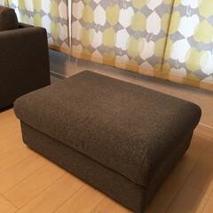 リビング収納/IKEAソファ/インテリア/場所の節約/ソファ/簡単/... わが家のぬいぐるみ収納。 特に大物。 飾…(2枚目)
