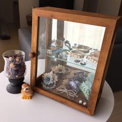 コレクションケース/アクセサリー置き場/雑貨/見せる収納/簡単/おしゃれ/... 昔、セレクトリユースショップで買った木製…