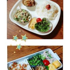 お昼ごはん/ワンプレート/ランチプレート/Today's lunch/LIMIAごはんクラブ/わたしのごはん/... 今日の息子&娘のお昼ご飯💕