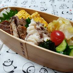 おひるごはん/お弁当 おはよーございまーす🎵 今日のおべんとう…(1枚目)
