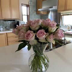 生花/薔薇 薔薇🌹の花が、ビックリ👀するほど安かった…