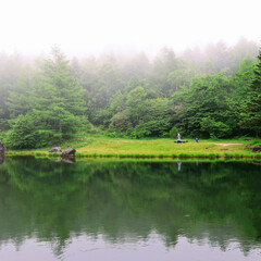 長野/散策/霧 霧の中の散策