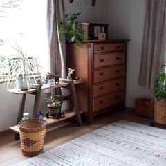 寒さ対策/私の部屋/住宅リフォーム 息子の部屋で、物置部屋みたいになっていた…