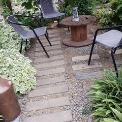 家庭菜園/我が家の庭 我が家の庭と畑です。 最近全く雨が降らな…(3枚目)