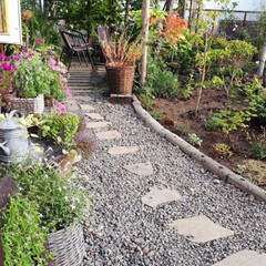 カマキリ/我が家の庭 少し紅葉してきたお庭です。 最後の写真は…