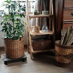 DIY/一輪車/ガーランド/ナチュラル雑貨/私の部屋 好きな雑貨や家具を集めた部屋の一角です。…