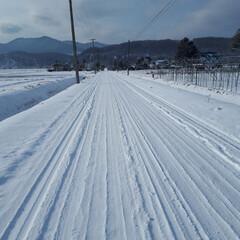 私の散歩コース/冬の風景/アスパラ畑 いつものウォーキングの道です。道路は堤防…