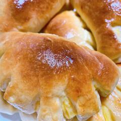 パン/パン屋さん/焼き立て/いい匂い/クリームパン/おやつ/... 即席パン屋さんOPENです☆ クリームパ…