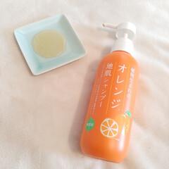 石澤研究所/植物生まれのオレンジ地肌シャンプーN シャンプー | 石澤研究所(シャンプー)を使ったクチコミ「じめじめした梅雨の季節、柑橘系の香りって…」(2枚目)
