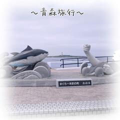 トラベル/旅行/旅行好きさんと繋がりたい/海/GoToキャンペーン/マグロ丼/... 大間のマグロを食べに行ってきました🐟  …