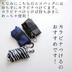 保冷ショッピングエコバッグ トート ブラック / トルネ(弁当箱)を使ったクチコミ「レジ袋有料化⠀ 始まりましたね。⠀ ⠀ …」(4枚目)
