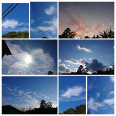 夕焼け/雲/青空 青空と雲 ピンク色の空
