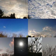 月/夕焼け/雲/青空/満月 11/30満月🌕ビーバームーン 青空・雲…