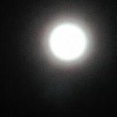 暮らし 2020.5.7 今日は満月🌕 フラワー…