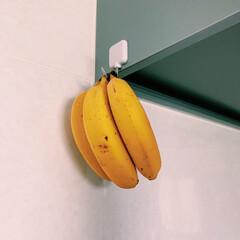 食材保存/バナナ保存/マグネットフック/バナナ/収納 バナナは専用スタンドではなく、換気扇横の…