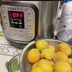 インスタントポット DUO Mini   インスタントポット(電気圧力鍋)を使ったクチコミ「梅ジャム作りをインスタントポットでチャレ…」(1枚目)