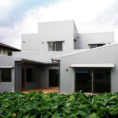 ガルバリュウム鋼板/中庭/テラス/住まい/不動産・住宅/建築/... 南に中庭のある家