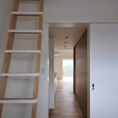 インテリア/子供部屋/小屋裏部屋/梯子/吹抜け/トップライト/... コンパクトで可愛い家  子供部屋と小屋裏…
