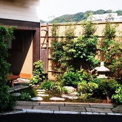 茶室/インテリア/ガーデニング/茶庭/灯篭/石畳/... 茶室、茶庭、苔庭