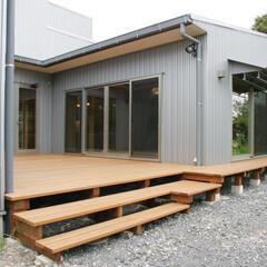 ガルバリュウム鋼板/ウッドデッキ/中庭/庭/ガーデニング/新築/... コの字の家、南に中庭がある家 中庭テラス…
