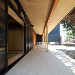 縁側/テラス/タイル/杉板/勾配天井/ヒノキ/... 縁側でのんびり暮らす家 軒の深い縁側が外…