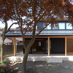 和モダン/縁側/和室/ガルバリュウム鋼板/テラス/タイル/... 縁側でのんびり暮らす家 庭から見た縁側と…