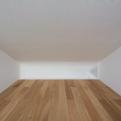 インテリア/北欧インテリア/ロフト/小屋裏部屋/トップライト/ハイサイドライト/... コンパクトで可愛い家 光あふれるロフト、…