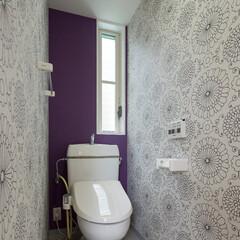 トイレ/アクセントカラー/柄物クロス/インテリア/北欧インテリア/新築/... アクセントカラーと柄物クロスの可愛いトイレ
