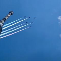 頑張れアスリート/スカイツリー/2020/オリンピック/ブルーインパルス/飛行機 ブルーインパルス 2020 オリンピック(1枚目)