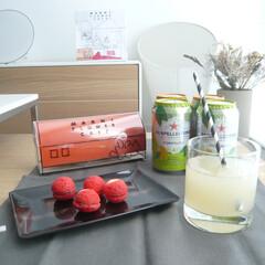 グレープフルーツ/炭酸飲料/おしゃれ/建築/建築家/インテリア おいしいグレープフルーツ果汁入り炭酸飲料…