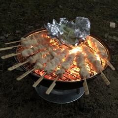 焚き火/やきとり/BBQコンロ/BBQ/スノーピーク/庭キャンプ キャンプ キャンプ キャンプ