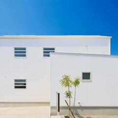 自然素材/無垢材/個性的な家/かっこいい家/おしゃれな家/暮らし/... 東京都東村山市の工務店がつくる 《個性的…