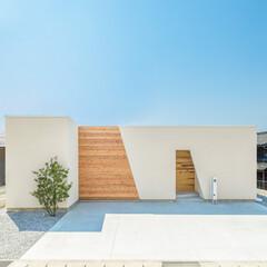 自然素材/無垢材/無垢杉の床/無垢床/無垢の床/個性的な家/... 東京都東村山市の工務店がつくる 《個性的…