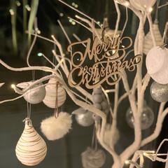 Christmas/300coins/オーナメント/クリスマス/クリスマスツリー/玄関/... 前のおうちでは狭くて、買えなかったツリー…(1枚目)