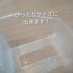 収納オタク/収納見直し/収納アイテム/収納グッズ/スッキリ収納/すっきり暮らす/... ダイソーで購入してよかったモノ🌼 「冷凍…(4枚目)