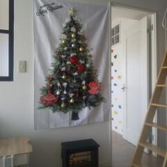 収納/クリスマスインテリア/暮らし/シンプルインテリア/ナチュラルリビング/インテリア/... 小さな我が家のクリスマスツリーは、壁に飾…