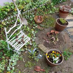 手作り椅子/割れ鉢/剪定枝/手作り/ガーデニング/庭/... 剪定枝が、まだまだあるので、 椅子を作り…(1枚目)