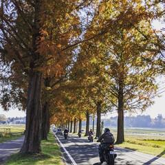 「Gotoトラベル 福井県三方五湖から滋賀…」(1枚目)