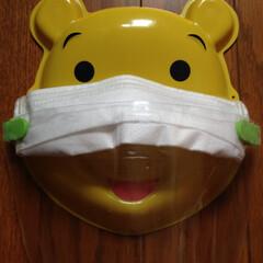 マスク/フェイスシールド/コロナ/飛沫 マスクに付けるマウスシールド
