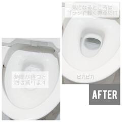 アース製薬 らくハピ いれるだけバブルーン トイレボウル 160g | アース製薬(トイレ洗剤)を使ったクチコミ「こんにちは ずっと掃除をサボっていて ト…」(4枚目)