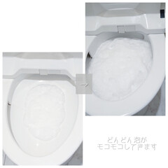 アース製薬 らくハピ いれるだけバブルーン トイレボウル 160g | アース製薬(トイレ洗剤)を使ったクチコミ「こんにちは ずっと掃除をサボっていて ト…」(3枚目)